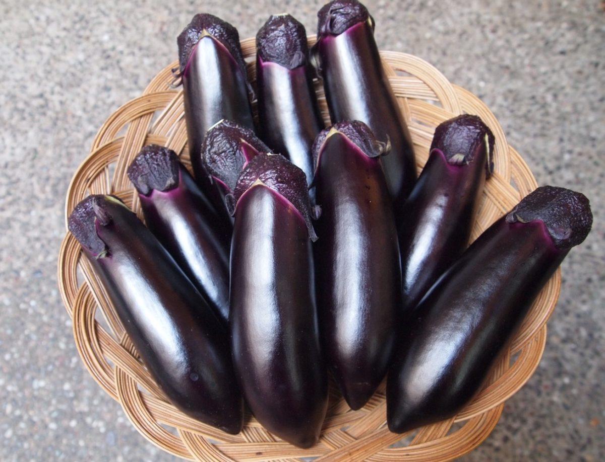 茄子のうまみに魅せられたコッペパン